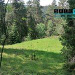 Lesný pozemok o celovej rozlohe 4356 m2 v obci Smolník